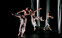 Proscenium Works: 1979–2011 Trisha Brown Dance Company